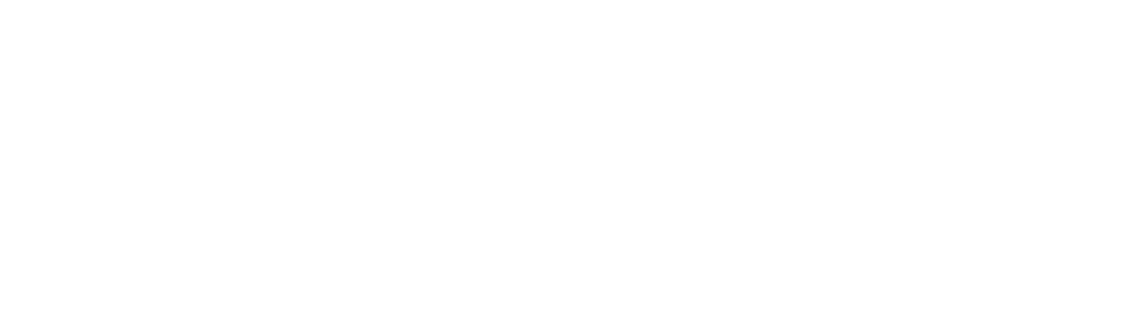 FLORENCE_logo_horz_white